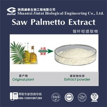 High quality Saw Palmetto Extract Fatty Acid 25%