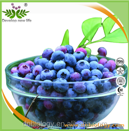 100% natural bilberry fruits extract in bulk anthocyanidins 25%/ anthocyanosides 36% Manufacturer