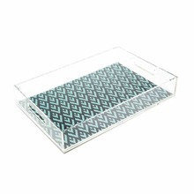 Widely Used Acrylic Lucite Buffet Serving Trays in Restaurant