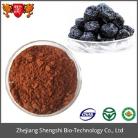 Wholesal Fruit Extract for Organic Natural Black Plum Supplement Powder