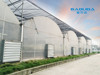 greenhouse PE film green house with control system for plant growth