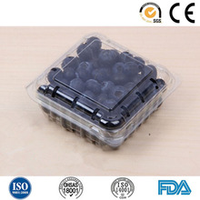 PET plastic tray and fruit packaging container for blueberry