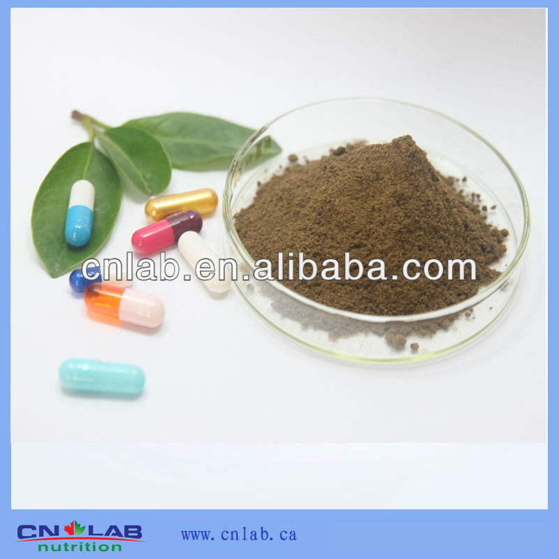 GMP Factory Supply Organic High Quality Tribulus Terrestris Extract Powder