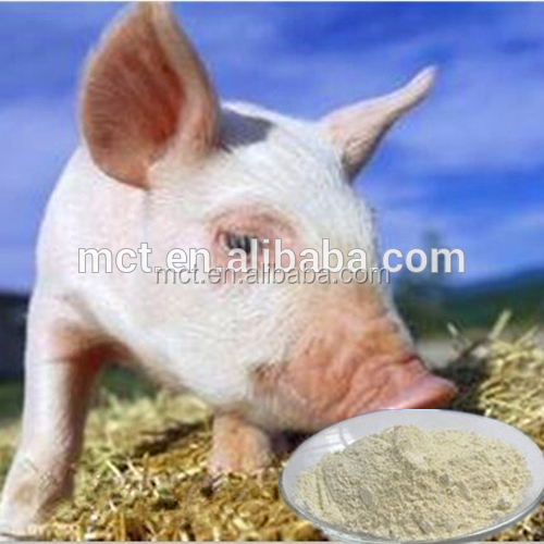 China supplier poultry feed Tilmicosin phosphate premix on hot sale