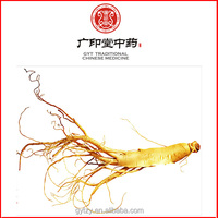 Long Years American Ginseng Root