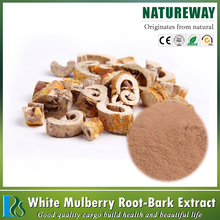 High quality mulberry leaves extract morus alba 1-dnj,morus alba l. dry fruit extract