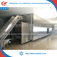 industrial vegetable and fruit commercial processing tunnel quick freezing iqf quick blast freezer machine/vegetable freezer