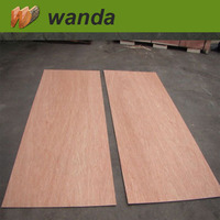 Hot Sale plywood door skin