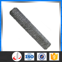 Anping Durable Hexagonal Chicken Wire Mesh