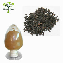 100% Natural Psoralea Corylifolia L Extract/Fructus Psoraleae Extract/Malaytea Scurfpea Fruit Extract
