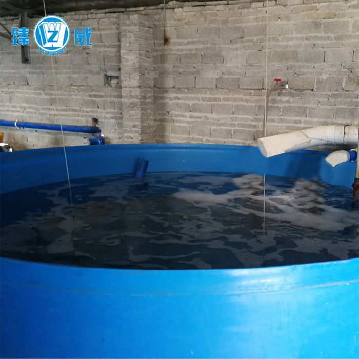 Indoor recirculating aquaculture <strong>system</strong> for fish feed sale