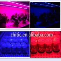 Indoor Plant Tissue Culture Lights full Spectrum T8 Led Grow Light