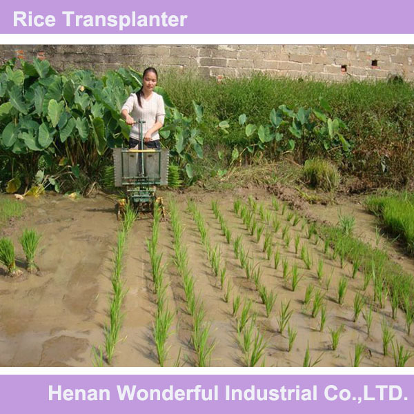 2014 hot sales mini manual rice planting machine and prices