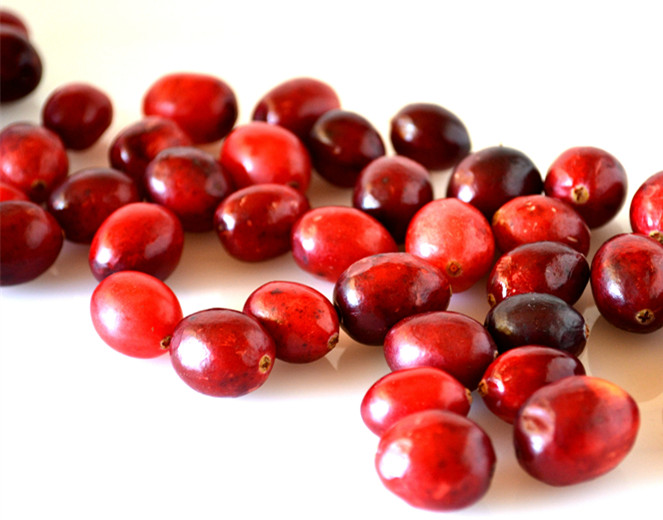 ISO factory supply natural cranberry juice extract 20:1 for wholesales