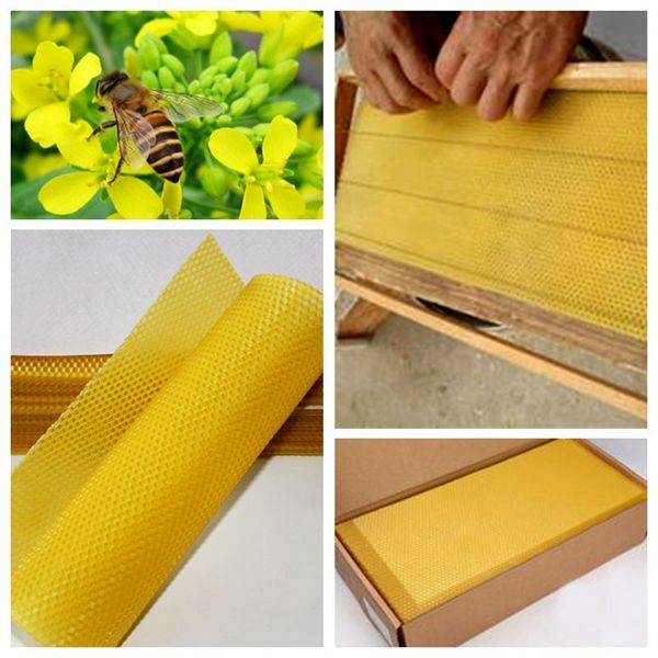 Hight quality plastic beeswax foundation for honey bee with best price