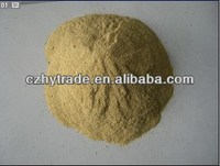 Yeast Powder 55% Saccharomyces cerevisiae
