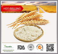 China wholesale Dietary Supplement Hydrolyzed Wheat Protein powder in stock