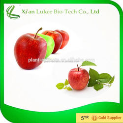 top quality apple fruit extract,apple extract skin whitening phloretin