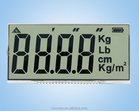 Custom LCD for Electronic Scale