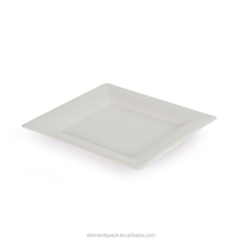 10 inch Bagasse Compostable Biodegradable Square Plate
