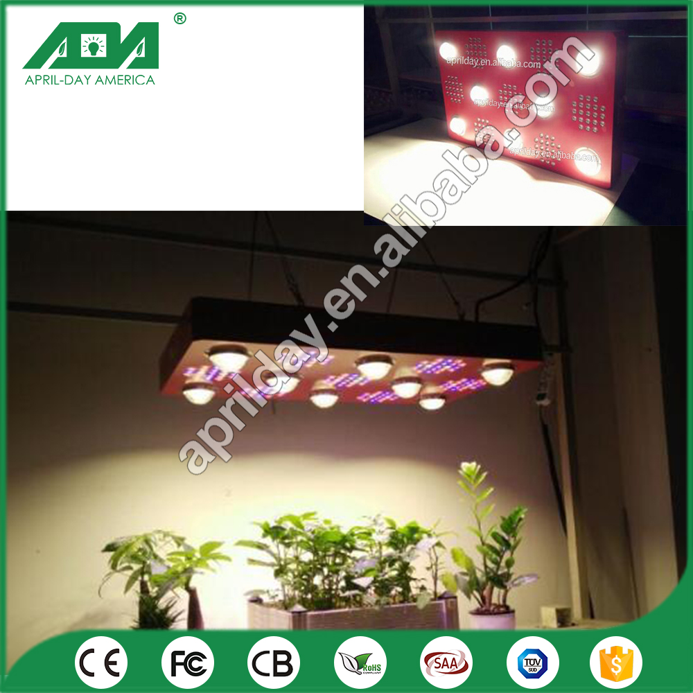 China Manufacturer high Quality COB 150W CXB 1000w 1300w 2000w led grow light for plant growth