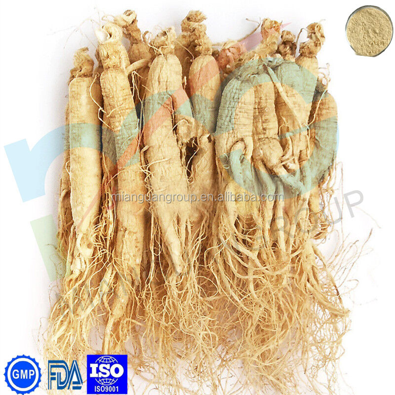 Supply FDA American ginseng root extract