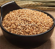 canadian oats wholesale prices can be provided