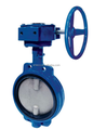 Various type and size 2''/4''/6''/8'' Worm Gear Actuated Flange end Eccentric Butterfly valve