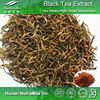 Factory supply Black Tea extract, Black Tea plant Extract 40% Theaflavine , Black Tea extract powder