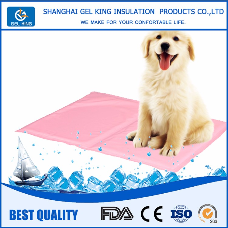 New Product Pet Accessories Dogs