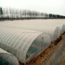 Low cost agricultural tunnel greenhouse
