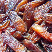 low price red dried raisin /sultana