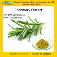 GMP Manufacturer Supply Natural Rosemary Oleoresin Extract