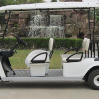 2 Seats Prices Electric Golf Car