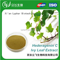 Supply Ivy Leaf Extract 10% Hederagenin C,100% Natural Ivy Extract