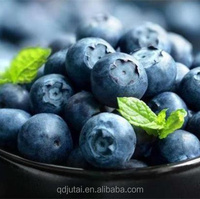 canned blueberry, prices wholesale for blueberries