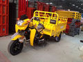 Pedal Cargo Tricycle Rickshaw (Model: HY250ZH-2Y)
