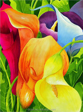 Calla lily rainbow oil painting wholesale beautiful flower painting pictures