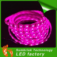 Hot sale SMD 5050 led strip waterproof for outdoor use