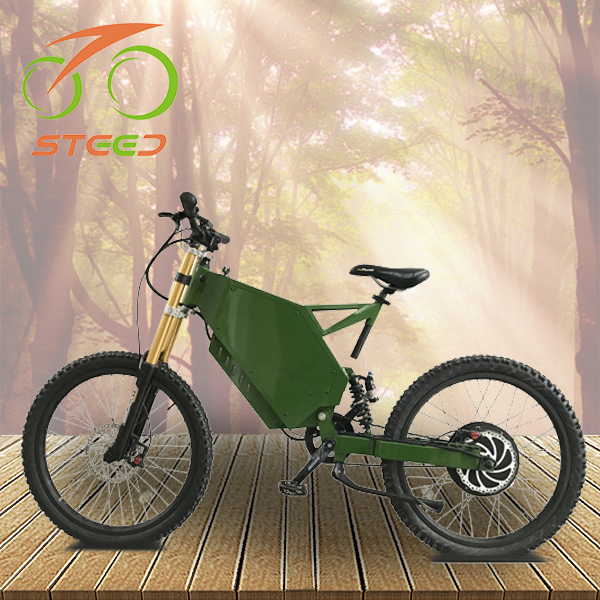 best design 3000W large power e bike with Panasonic battery