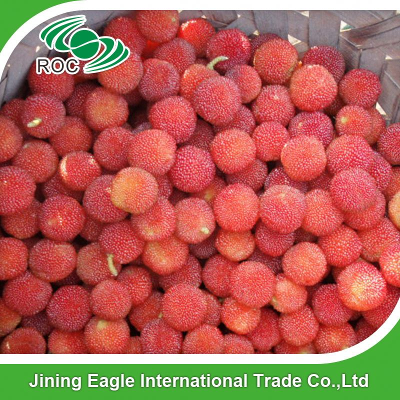Chinese Fresh Waxberry Bayberry Fruit For East Euro Market