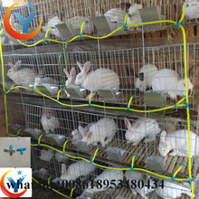 H type Wholesale Cheap Rabbit Farming cage In India For Sale