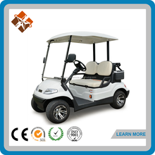 import golf carts 2 person electric hunting golf cart buggy