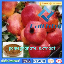 100% Organic Pomegranate Extract/ High Quality Pomegranate Seed Oil/IHigh Quality Best Price Of Pomegranate Oil