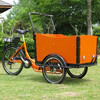 cargo tricycle china/electric three wheel cargo bike for sale/High Quality Electric Cargo Trike