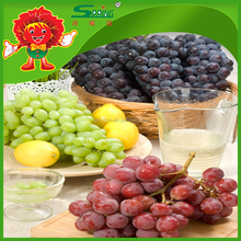fresh grapes kinds all packed in grapes fruit packaging boxes