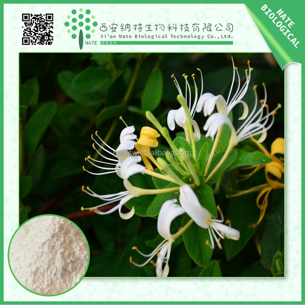 100% pure chlorogenic acid 98% HoneySuchle Flowers Extract/FREE sample honeysuckle extract/Low price Lonicera japonica powder