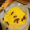 China Beeswax Factory Yellow White Food