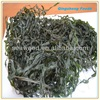 Chinese manufacturer high swelling sea kelp