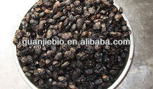 high quaility sale of Touchi Extract